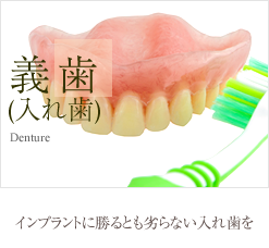 義歯(入れ歯) インプラントに勝るとも劣らない入れ歯を